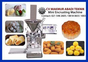 mini-encrusting